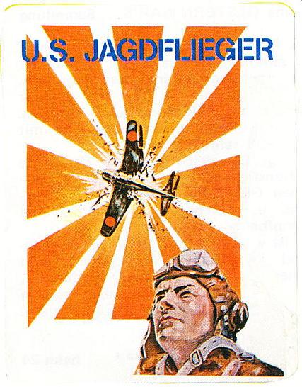 U.S.Pilot Picture