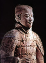 Qin Dynasty Warrior