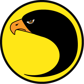 Blackhawk embleme stylized