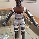 Custom Cyborg 6