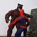 spidey vs. grizzly