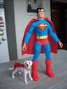 custom Krypto