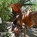 TXU Energy Presents Dragons at the Houston Zoo 11 Manticore
