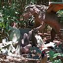 Boreno Dragon